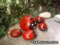 камни жучки